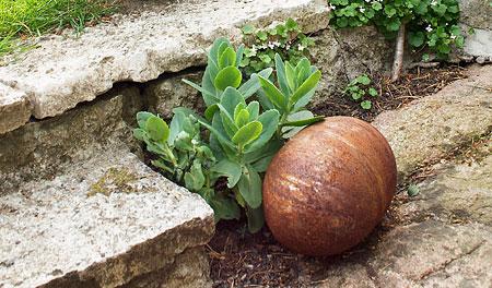 Trädgårdstrappa och rost